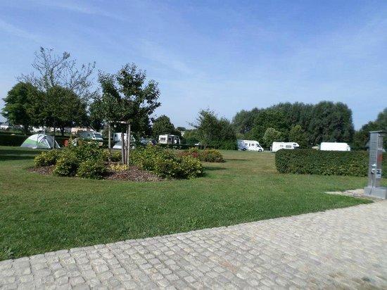 Camping Bon Accueil: aire pour les tentes