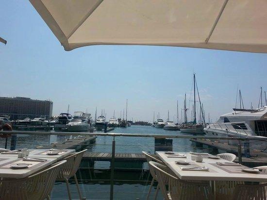 Uniko deck view overlooking the Marina