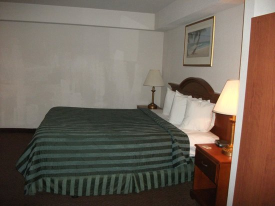 Quality Inn & Suites Redwood Coast: Bed was comfy