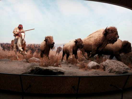 Manitoba Museum : Old history