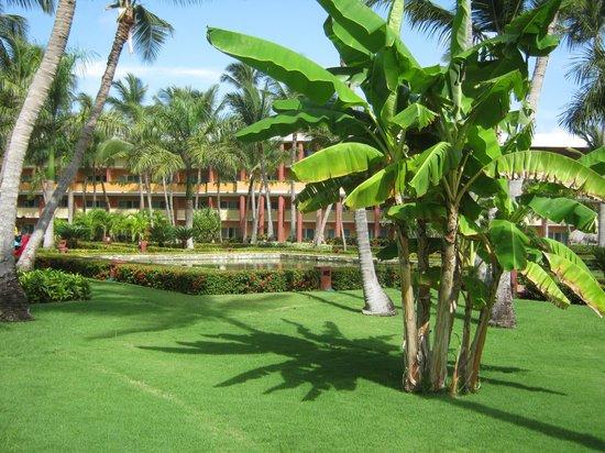 Iberostar Punta Cana: Zonas comunes del hotel - impecables