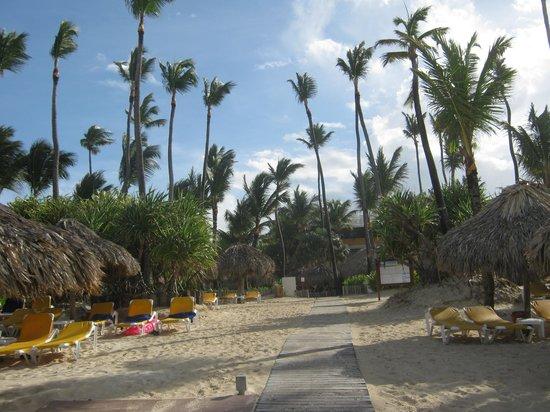 Iberostar Punta Cana: Zona de playa