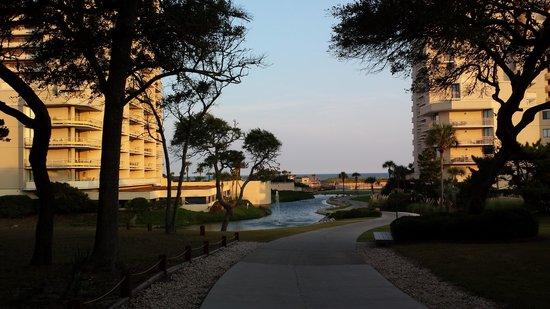 Ocean Creek Resort : Towers view