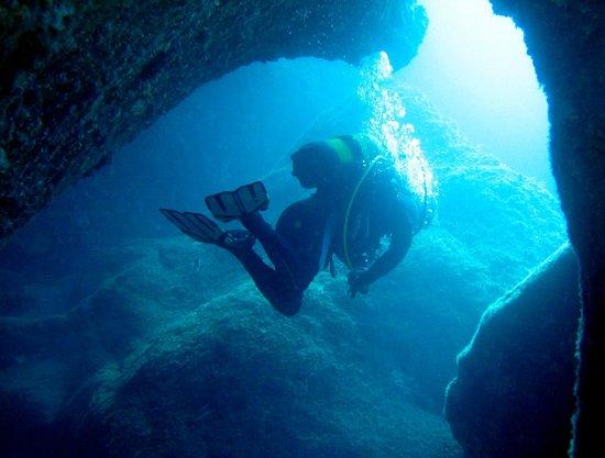 Oceansub : Le guide