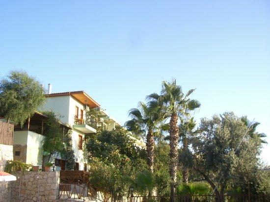 Patara Delfin Hotel: Hotel