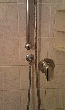 Trieste Hotel: Particolare doccia