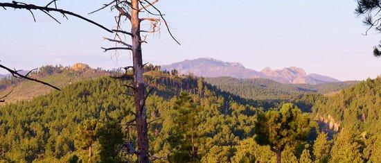 BackRoads Inn & Cabins: mountain view across from cabin