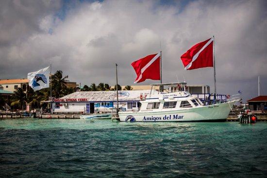 Amigos Del Mar Dive Shop