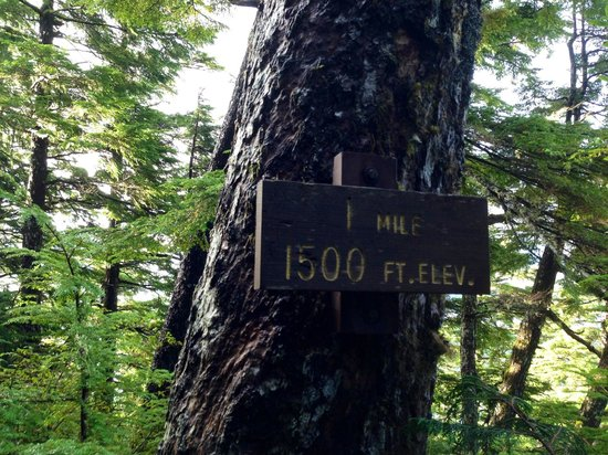 Deer Mountain Trail: That first mile is a B _ _ _ _