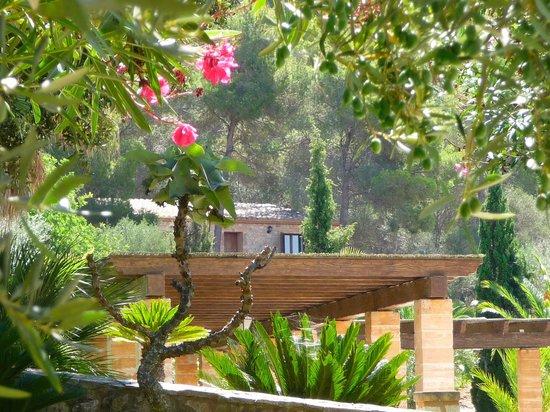 Son Terrassa: Blick von der Terrasse von Zimmer Nr. 6