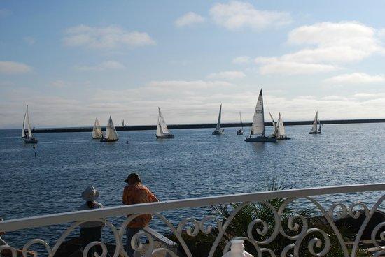 Oceanside Marina Suites : Harbor and ocean