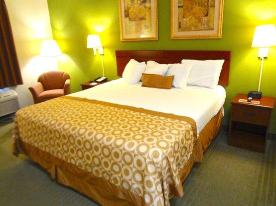 Ramada Inn Brunswick: Standard King Bed Room