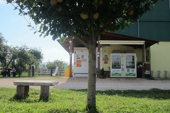 Azienda Agricola Juvenilia
