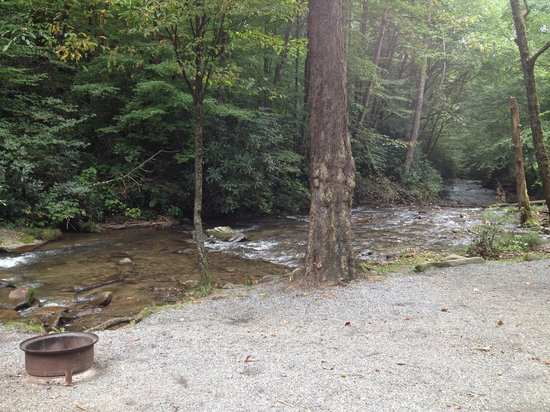 Indian Creek Campground : Beautiful site #12