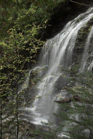 Cabins at Lopstick : Beaver Brook Falls