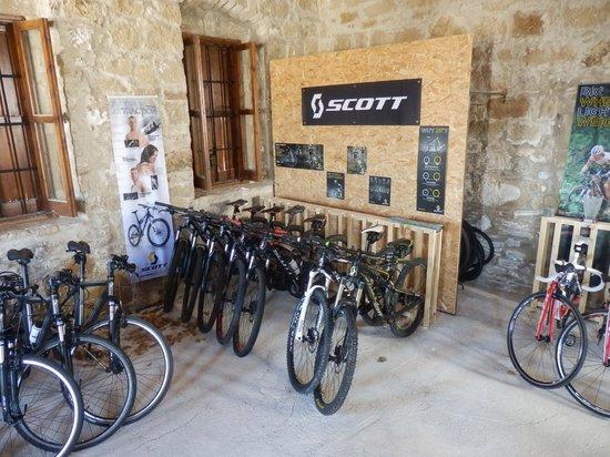 Tokhni, Chipre: Scott bikes