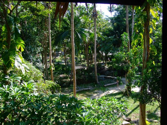 Thongtapan Resort: Sicht aus dem Bungalow