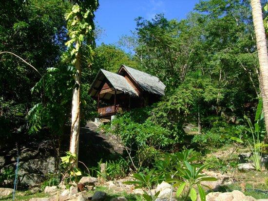Thongtapan Resort: Bungalow von außen