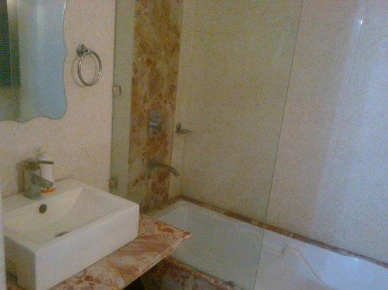 Inn at Delhi: bath was clean