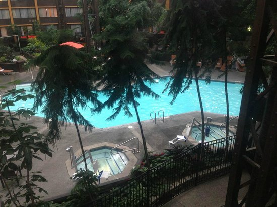 Hotel Room Around Pool Picture Of Seattle Airport