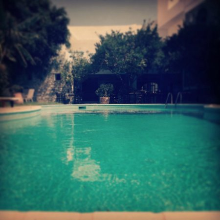 Hotel Galinos: Πισίνα