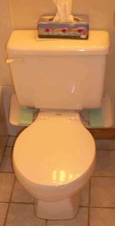 Kindred Spirits Country Inn & Cottages: Strange toilet (non) fix