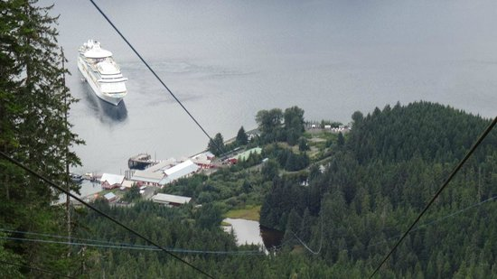 Details Of The Zip Line Picture Of Icy Strait Point