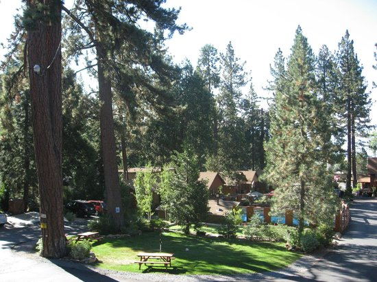 Cedar Glen Lodge: View from our lodge