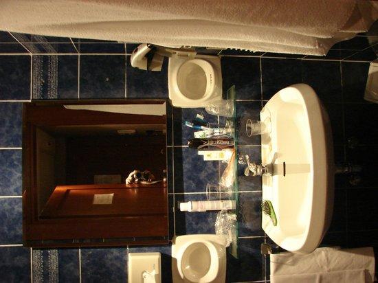 Accademia Hotel : Baño
