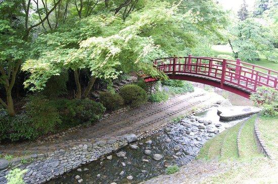 N Nuphars Jardin Japonais Picture Of Albert Kahn Musee