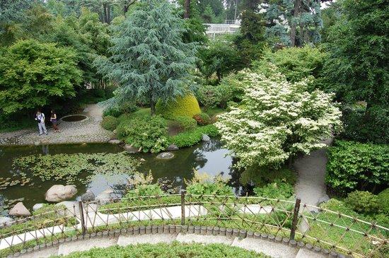 N nuphars jardin japonais picture of albert kahn musee for Albert kahn jardin japonais