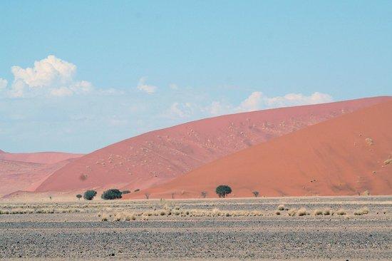 Namib Desert Lodge: Sossusvlei