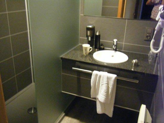 BEST WESTERN Flanders Lodge : bathroom area