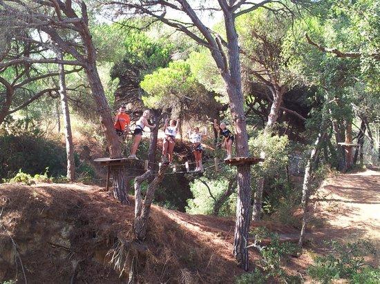 Luso Aventura Albufeira: In the trees