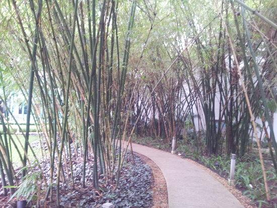Chatrium Hotel Riverside Bangkok: Bamboo passage in the park