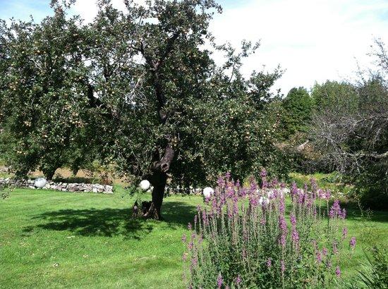 Snowvillage Inn: Floral Drive