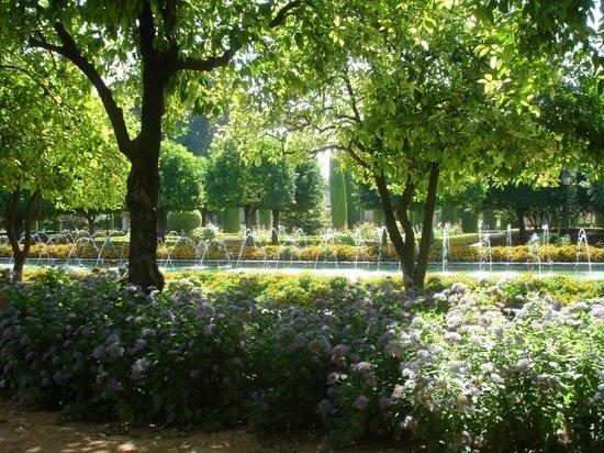 Apartamentos Turisticos Alberca: Gardens at Alcazar