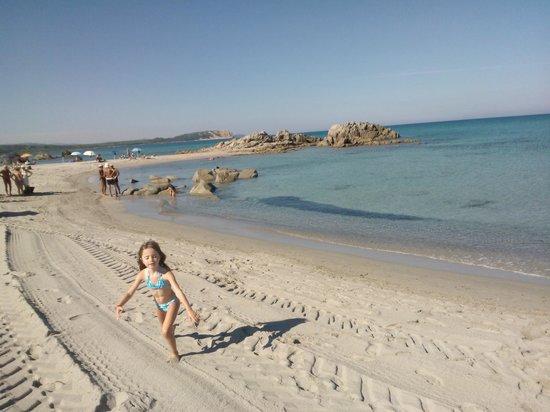 Camping La Liccia: spiaggia rena majore