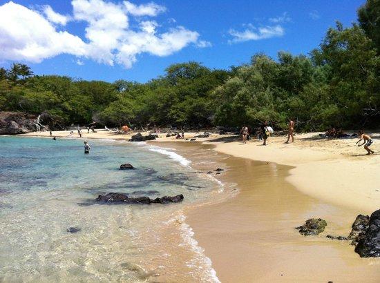 Waialea Beach: Area with sandy bottom, Ok for bare feet