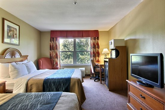 Comfort Inn & Suites: Two Bed Standard with Micro Fridge