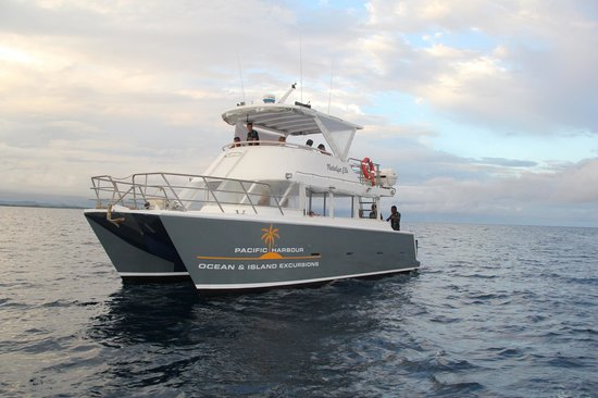 Freedive Fiji Charters - Day Trips : New Custom 40 Passenger Catamaran