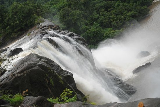 Bethania Resorts: Athirappilly falls... very nearby the resort