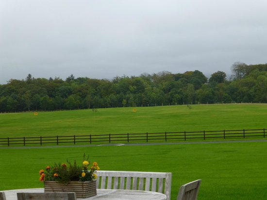 Mount Falcon Estate: one of the views of the grounds