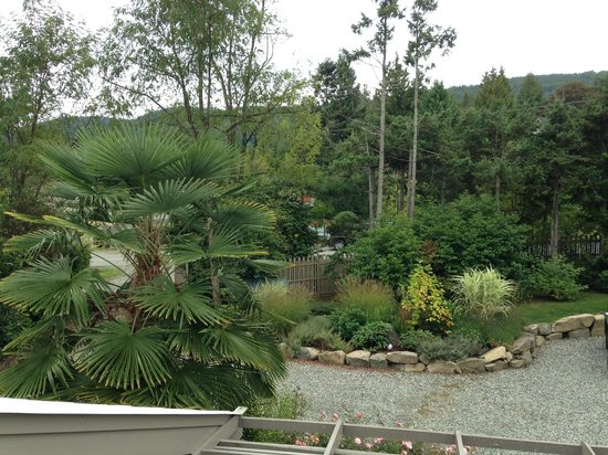 Hedgerow House Bed & Breakfast: The view from the balcony
