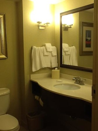 Hilton Garden Inn Arlington Courthouse Plaza: bath was definitely cramped. door barely cleared the toilet.