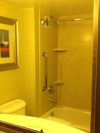 Hilton Garden Inn Arlington Courthouse Plaza: shower area. could have added a light to brighten this area up some.