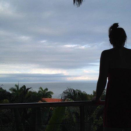 Tulemar Bungalows & Villas: Casa Panorama South Lower view