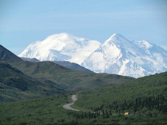 Alaskan Tour Guides Day Tours: Denali!