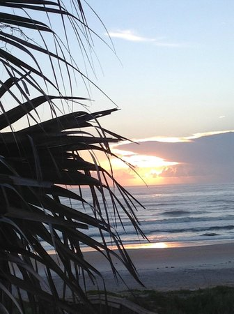 Sun Deck Motel : A view of Florida