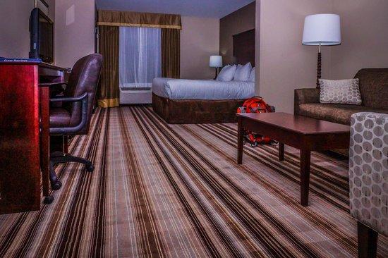 Comfort Suites Hudson: Room